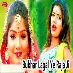 Listen to Bukhar Lagal Ye Raja Ji songs from Bukhar Lagal Ye Raja Ji