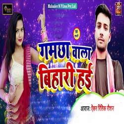Gamchha Wala Bihari Hayi songs