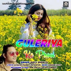 Guleriya Ke Phool songs
