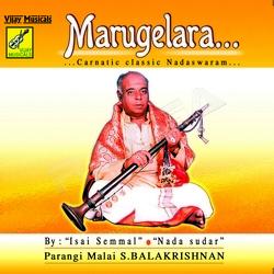 Marugelera - Carnatic Classic Nadaswaram songs