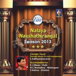 Nalaya Nakshathirangal (Season 2013)  S Adithyanarayanan songs