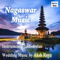Nagaswar Music songs