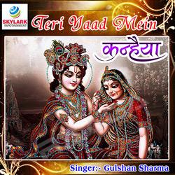 Listen to Bhakto Ke Ghar Bhi songs from Teri Yaad Mein Kanhaiya