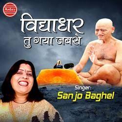 Vidhyadhar Tu Gaya Jabse songs