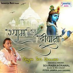 Shyam Tera Deewana songs
