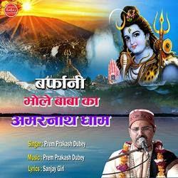Barfani Bhole Baba Ka Amarnath Dham songs