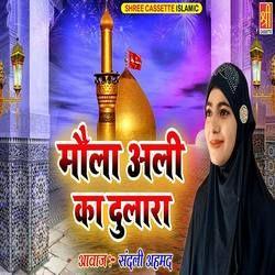 Maula Ali Ka Dulara songs