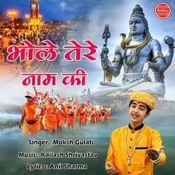Bhole Tere Naam Ki songs