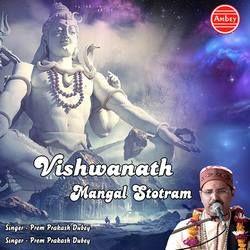 Vishwanath Mangal Stotram songs