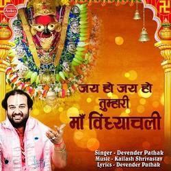 Jai Ho Jai Ho Tumhari Maa Vindhyachali songs