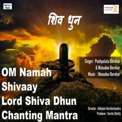 Om Namah ShivaayLord Shiva Dhun Chanting Mantra songs