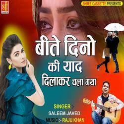 Beete Dino Ki Yaad Dilakar Chala Gaya songs