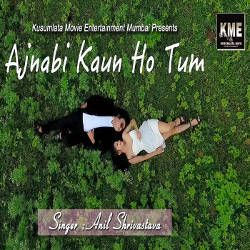 Ajnabi Kon Ho Tum songs