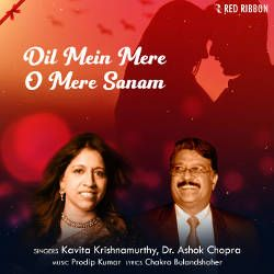 Dil Mein Mere O Mere Sanam songs