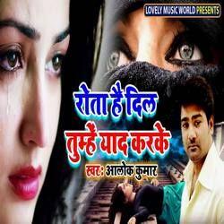 Rota Hai Dil Tumhe Yaad Karke songs