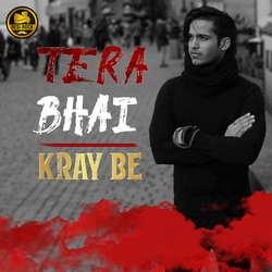 Tera Bhai songs