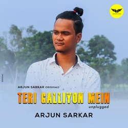 Teri Galliyon Mein (Unplugged) songs