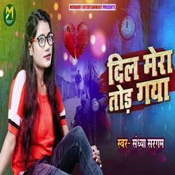 Dil Mera Tod Gaya songs