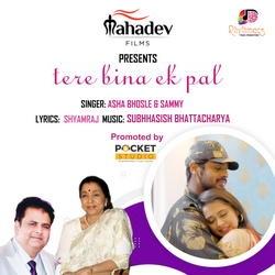 Tere Bina Ek Pal songs