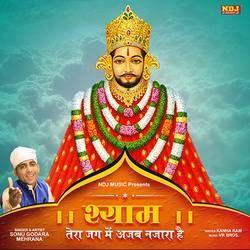 Shyam Tera Jag Me Ajab Nazara Hai songs