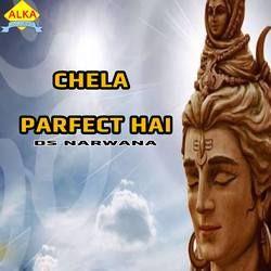 Chela Parfect Hai songs