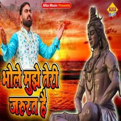 Bhole Mujhe Teri Jarurat Hai songs