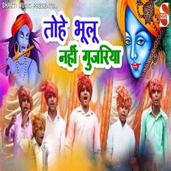Tohe Bhulu Nahi Gujarriya songs