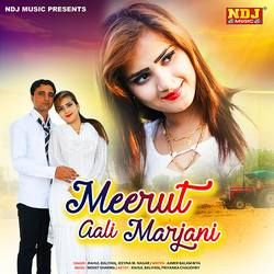 Meerut Aali Marjani songs