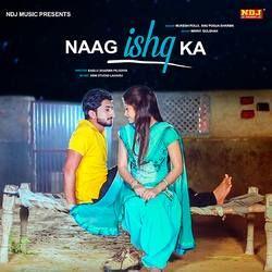 Naag Ishq Ka songs