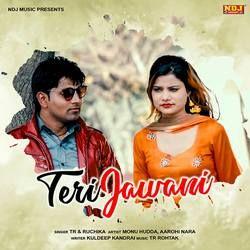 Teri Jawani songs