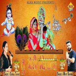 Tu Meri Diwani songs