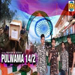 Pulwama 14 2 songs