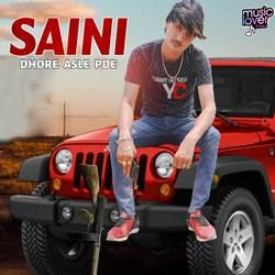 Saini Dhore Asle Pade songs