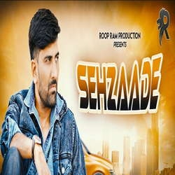 Sehzaade songs
