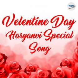 Valentine Day Haryanvi Special Love Song songs
