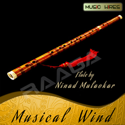 Listen to Raag Bageshree - Bandish in Taal Zaptaal & Ektaal songs from Musical Wind (Instrumental)