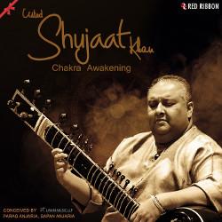 Ustad Shujaat Khan - Chakra Awakening