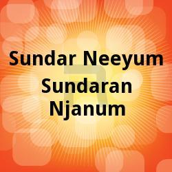 Listen to Aromal Poove songs from Sundari Neeyum Sundaran Njanum