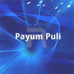 Listen to Thanka songs from Payum Puli