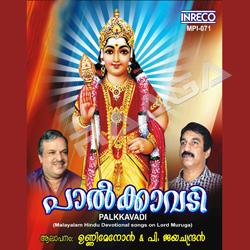 പാൽക്കാവടി songs