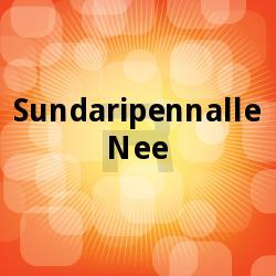 Listen to Thasbihumani songs from Sundaripennalle Nee
