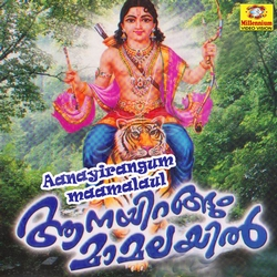 Listen to Chinmayaroopam songs from Aanayirangum Mammalayil - Vol 1