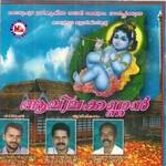 Listen to Nilavilakkinthiri songs from Aalilakkannan