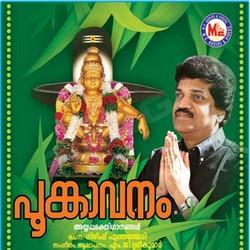 Listen to Ayyappanthinthakampettathulli songs from Poongavanam