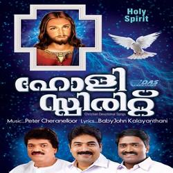 Listen to Nanma Niranjoru Mathave songs from Holy Spirit