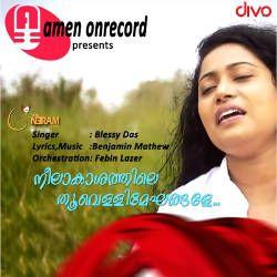 Neelakhashathile Thoovelli Mekhangale songs