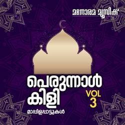 Perunal Kili - Vol 3 songs