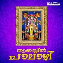 Thrikkayil Paalazhi songs