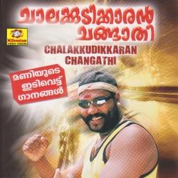 Chalakudikaranm Changathi