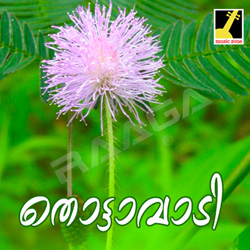 Listen to Rajarajeswari Devi songs from Thottavadi
